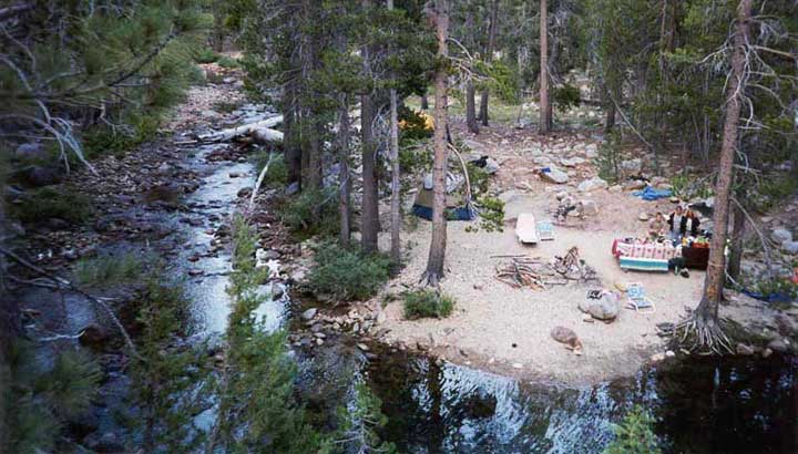 Radified Campsite At Yosemite Creek Campground From