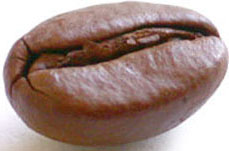 Coffee bean, used to make espresso, cappuccino, latte