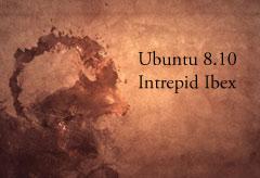 Ubuntu Linux 8.10 Intrepid Ibex