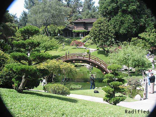 Japanese garden, Huntington Library & Botanical Gardens in Pasadena